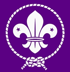 logo-world-scout